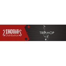 Trip hop