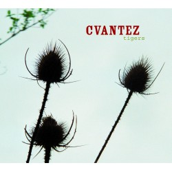 CVANTEZ - Tigers (CD)